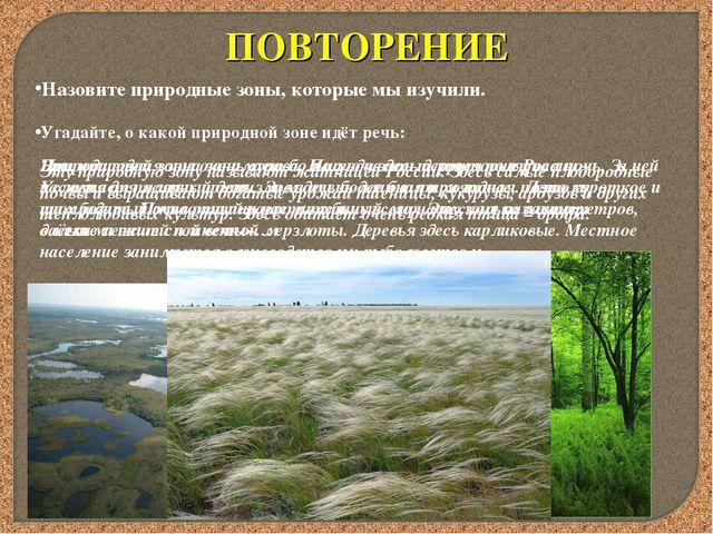 ПОВТОРЕНИЕ Назовите природные зоны, которые мы изучили. Угадайте, о какой при...