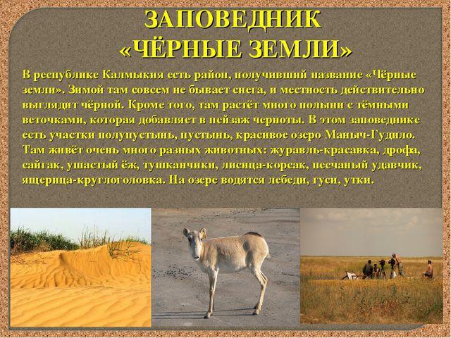 ЗАПОВЕДНИК «ЧЁРНЫЕ ЗЕМЛИ» В республике Калмыкия есть район, получивший назван...