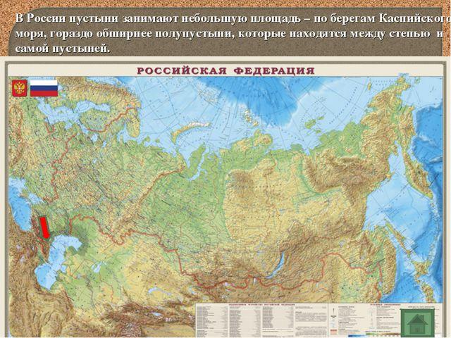 В России пустыни занимают небольшую площадь – по берегам Каспийского моря, го...