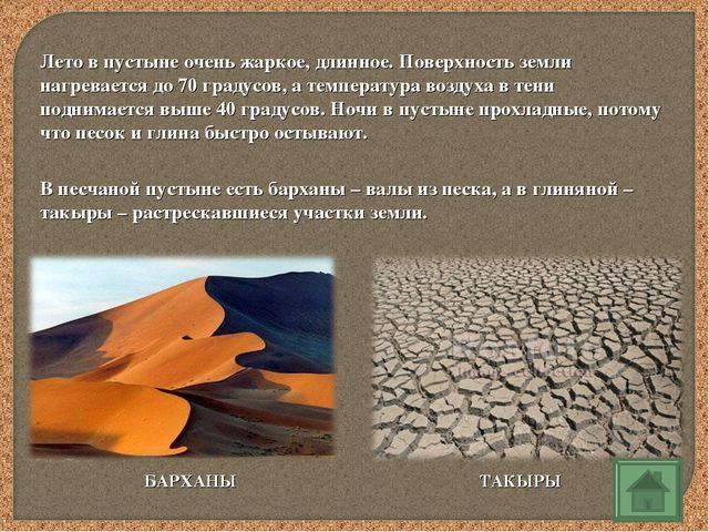 Лето в пустыне очень жаркое, длинное. Поверхность земли нагревается до 70 гра...