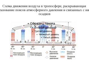 Схема движения воздуха в тропосфере, раскрывающая образование поясов атмосфер
