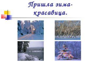 Пришла зима-красавица.