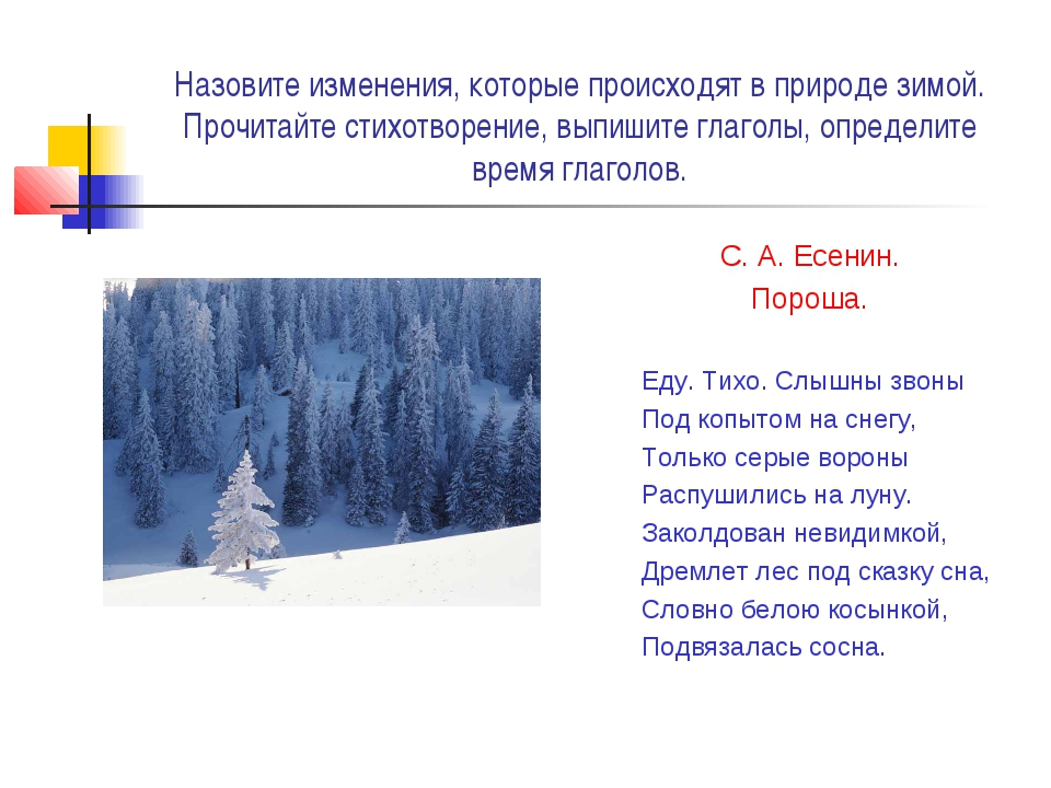 Назовите изменения, которые происходят в природе зимой. Прочитайте стихотворе...