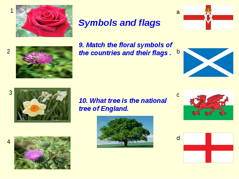 Symbols and flags 1 2 3 4 a b c d 9. Match the floral symbols of the countrie...