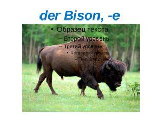 der Bison, -e