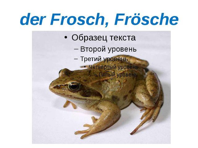 der Frosch, Frösche
