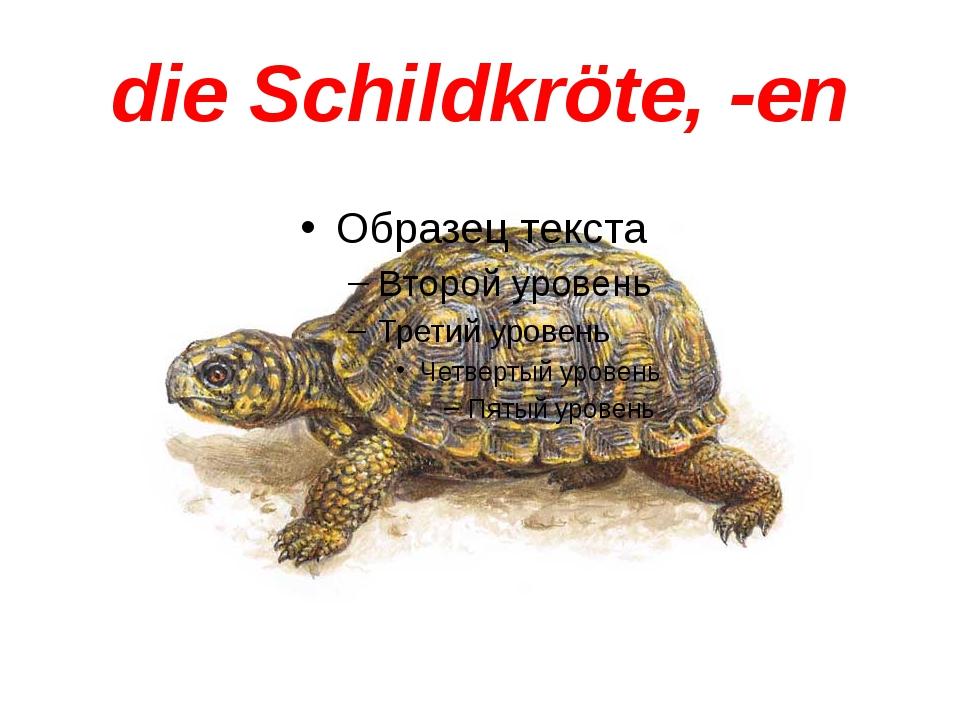 die Schildkröte, -en