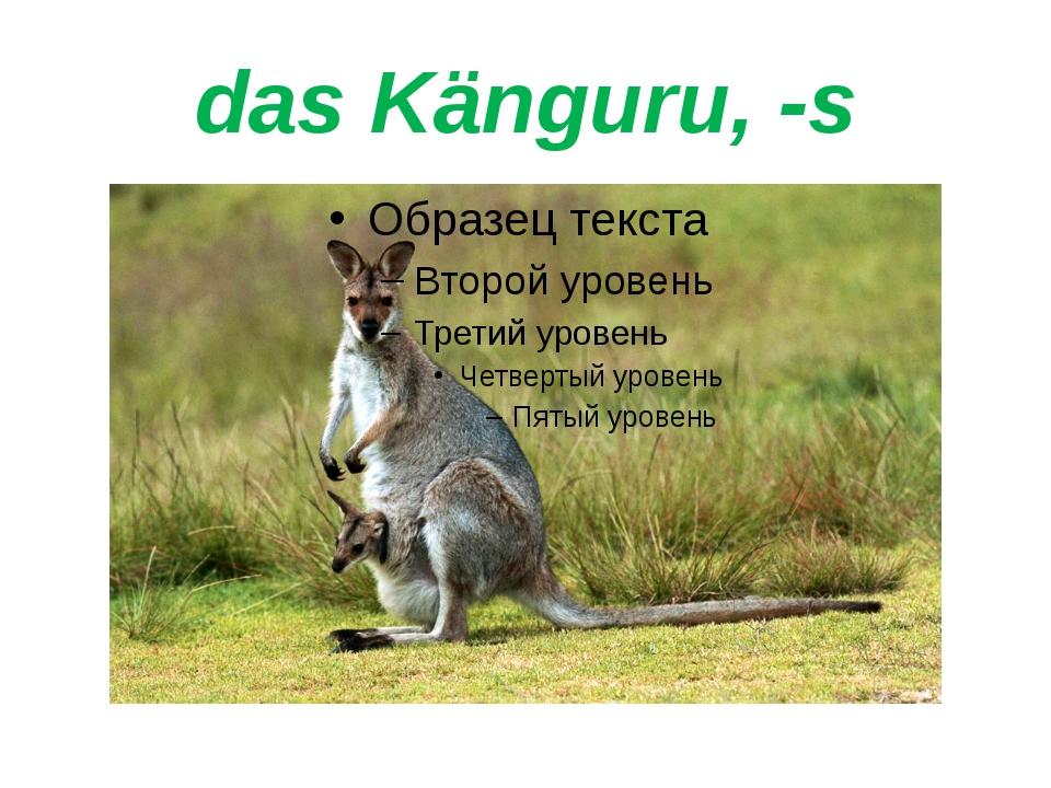 das Känguru, -s