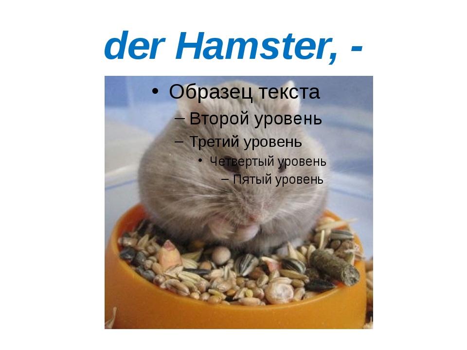 der Hamster, -