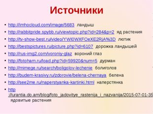 http://imhocloud.com/image/5683 ландыш http://rabbitpride.spybb.ru/viewtopic.