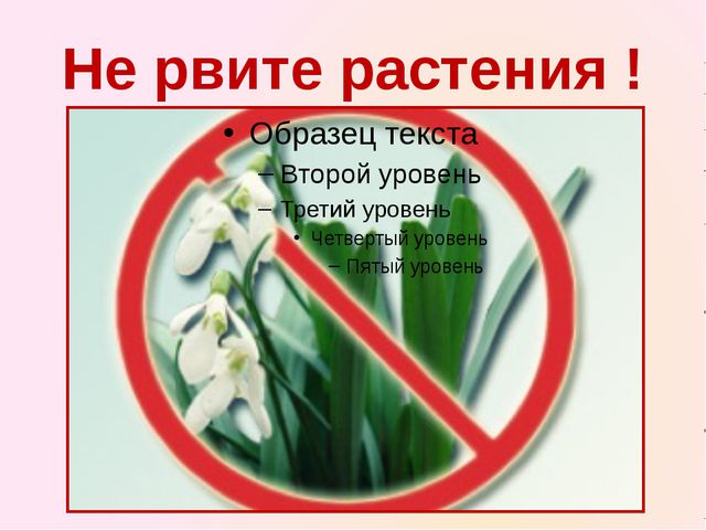 Не рвите растения !