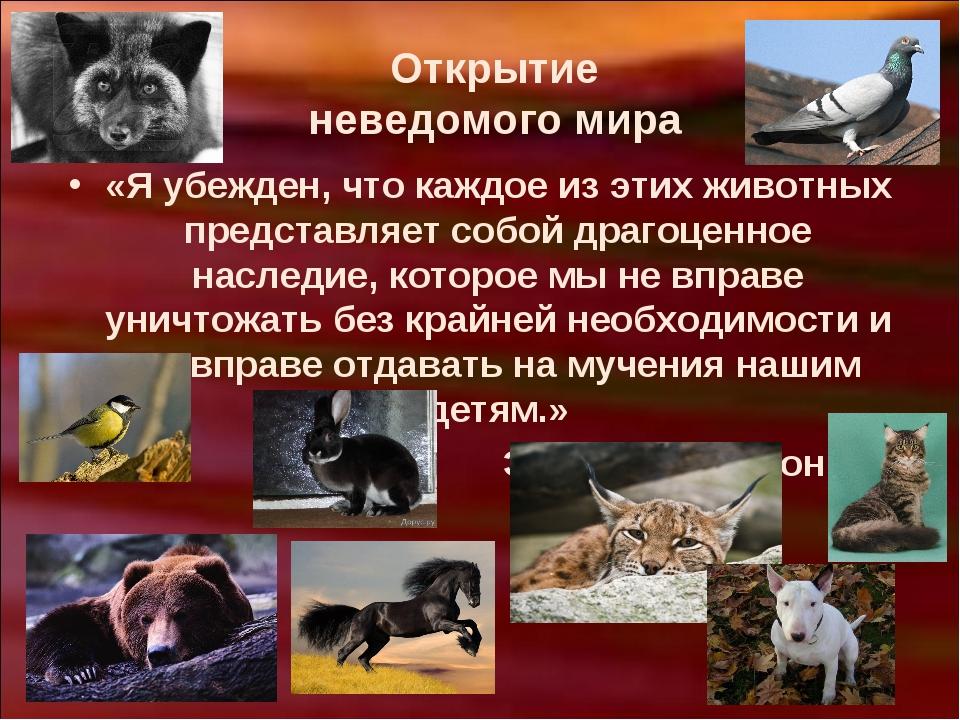 Открытие неведомого мира «Я убежден, что каждое из этих животных представляет...