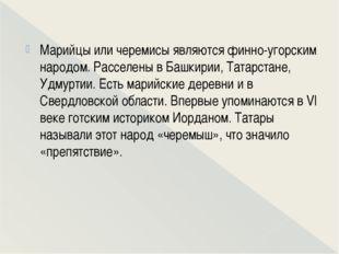 Марийцы или черемисы являются финно-угорским народом. Расселены в Башкирии,