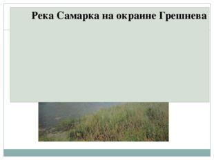 Река Самарка на окраине Грешнева