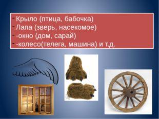 Крыло (птица, бабочка) Лапа (зверь, насекомое) -окно (дом, сарай) -колесо(тел