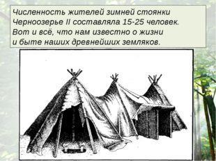 Численность жителей зимней стоянки Черноозерье II составляла 15-25 человек.