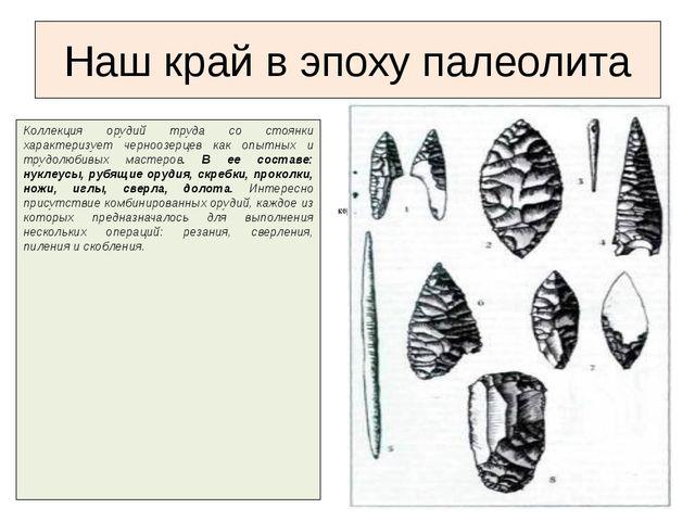 Коллекция орудий труда со стоянки характеризует черноозерцев как опытных и тр...