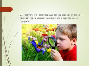 2. Практическое подтверждение усвоенных образов и явлений (организация наблю