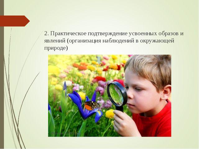 2. Практическое подтверждение усвоенных образов и явлений (организация наблю...