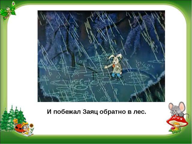 И побежал Заяц обратно в лес.