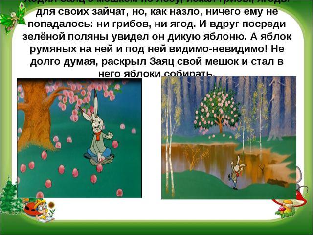 Ходил Заяц с мешком по лесу, искал грибы, ягоды для своих зайчат, но, как наз...
