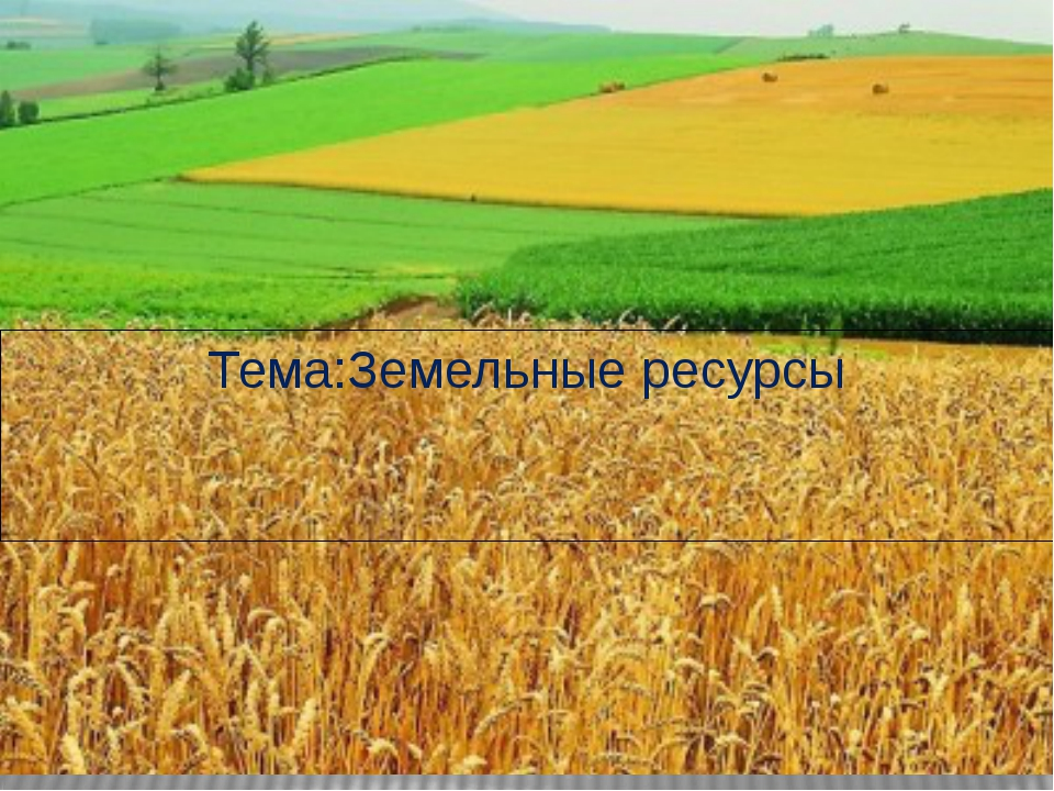 Тема:Земельные ресурсы
