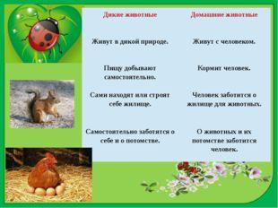 Дикие животные Домашние животные Живут в дикой природе. Живут с человеком. Пи