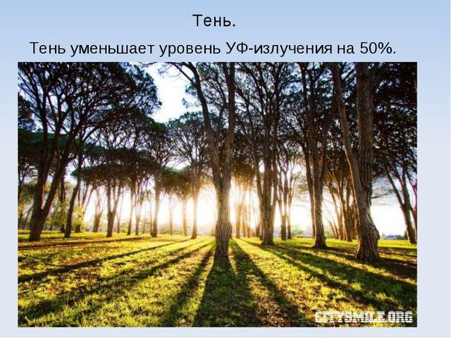 Тень. Тень уменьшает уровень УФ-излучения на 50%.