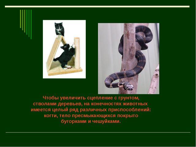 Чтобы увеличить сцепление с грунтом, стволами деревьев, на конечностях животн...