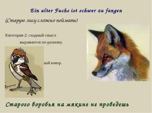 Ein alter Fuchs ist schwer zu fangen (Старую лису сложно поймать) Категория 2