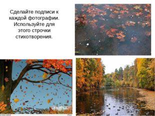 Сделайте подписи к каждой фотографии. Используйте для этого строчки стихотвор