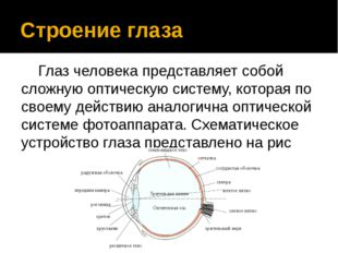 Строение глаза Глаз человека представляет собой сложную оптическую систему,