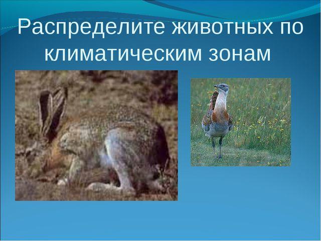 Распределите животных по климатическим зонам
