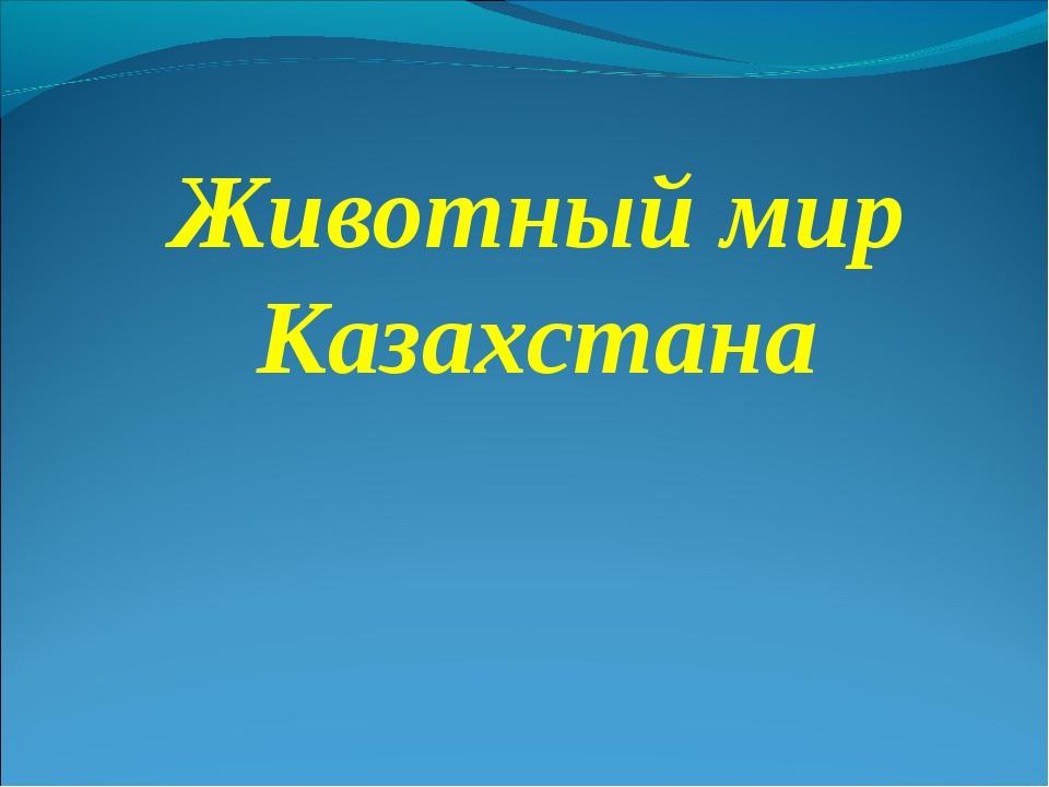 Животный мир Казахстана