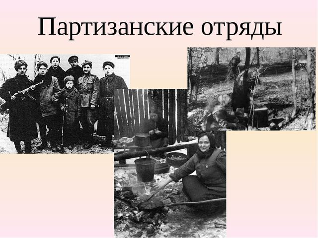 Партизанские отряды