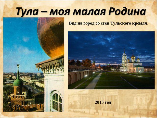 Вид на город со стен Тульского кремля.  2015 год