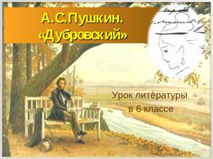 А.С.Пушкин. «Дубровский» Урок литературы в 6 классе