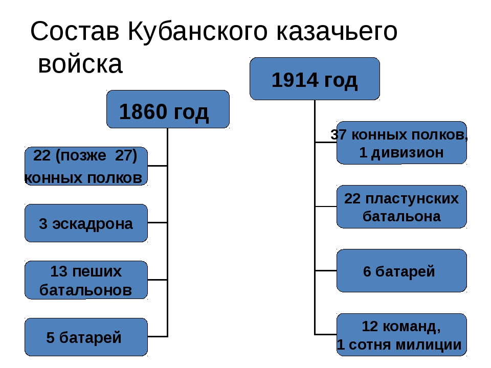 Состав Кубанского казачьего войска 1914 год 37 конных полков, 1 дивизион 22 п...