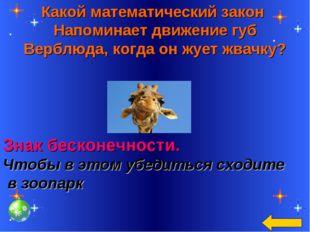 Какой математический закон Напоминает движение губ Верблюда, когда он жует жв