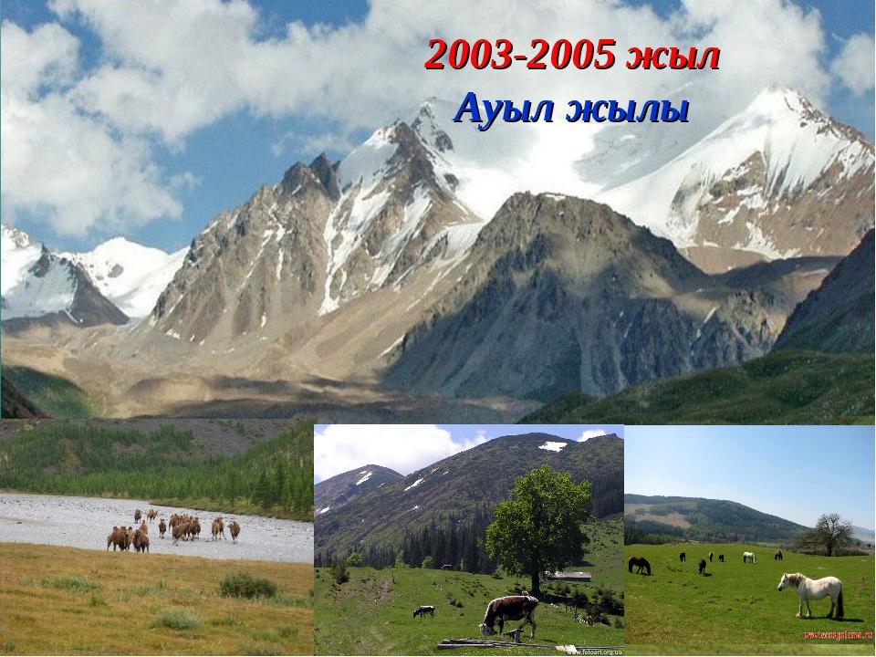 2003-2005 жыл Ауыл жылы