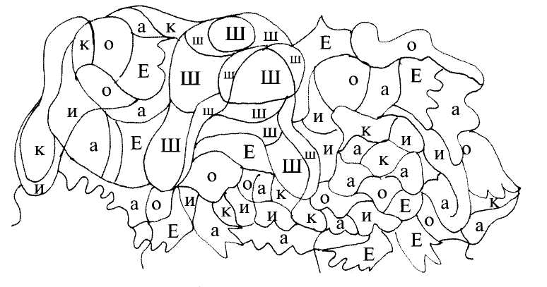Обучение грамоте Звук [ш] и буква Ш чтение русский язык Интернет урок дошкольник 1 класс