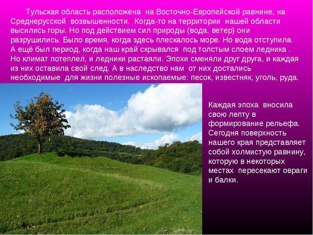 Тульская область расположена на Восточно-Европейской равнине, на Среднерусск...