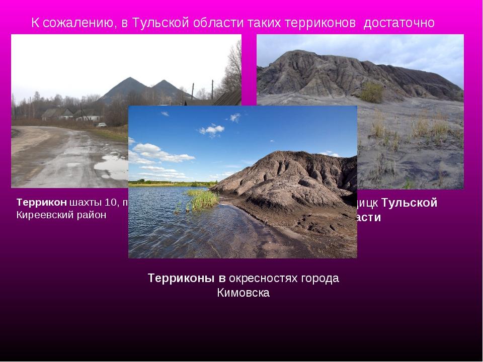 К сожалению, в Тульской области таких терриконов достаточно много. Террикон ш...