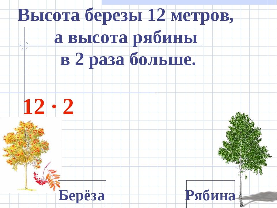 Высота березы 12 метров, а высота рябины в 2 раза больше. 12 ∙ 2 Берёза Ряб...