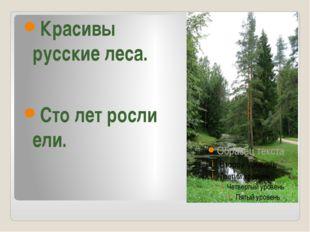 Красивы русские леса. Сто лет росли ели.