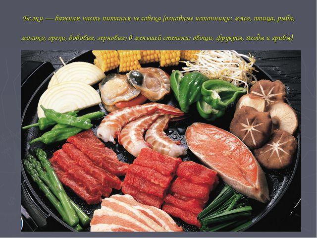 Белки— важная часть питаниячеловека(основные источники: мясо, птица, рыба,...