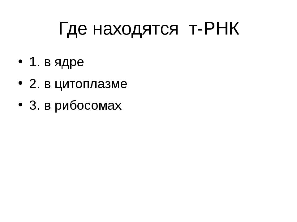Где находятся т-РНК 1. в ядре 2. в цитоплазме 3. в рибосомах