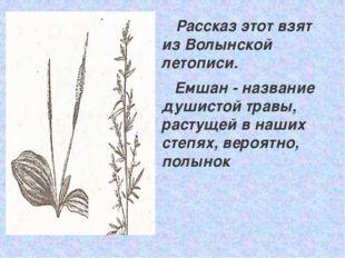 Рассказ этот взят из Волынской летописи. Емшан - название душистой травы, ра