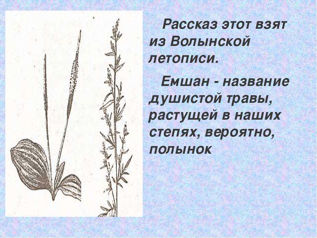Рассказ этот взят из Волынской летописи. Емшан - название душистой травы, ра...