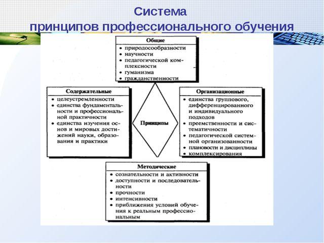 Система принципов профессионального обучения